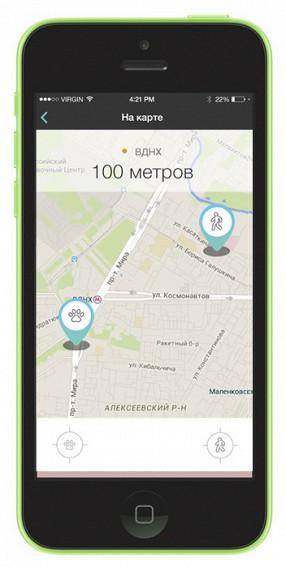 В России создан фитнес-трекер для собак